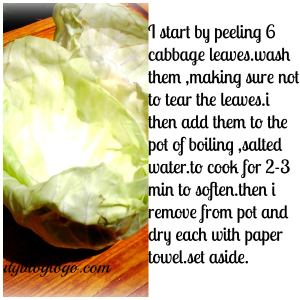 cabbage first step