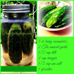picklebeautyblogtogo