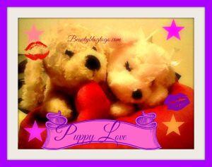 puppylovebeautyblogtogo